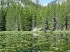 Estes Lake 1